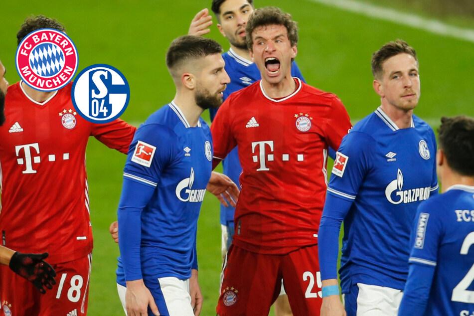 Können diese Zahlen lügen? Rekord-Bayern schon Meister, Schalke runter?