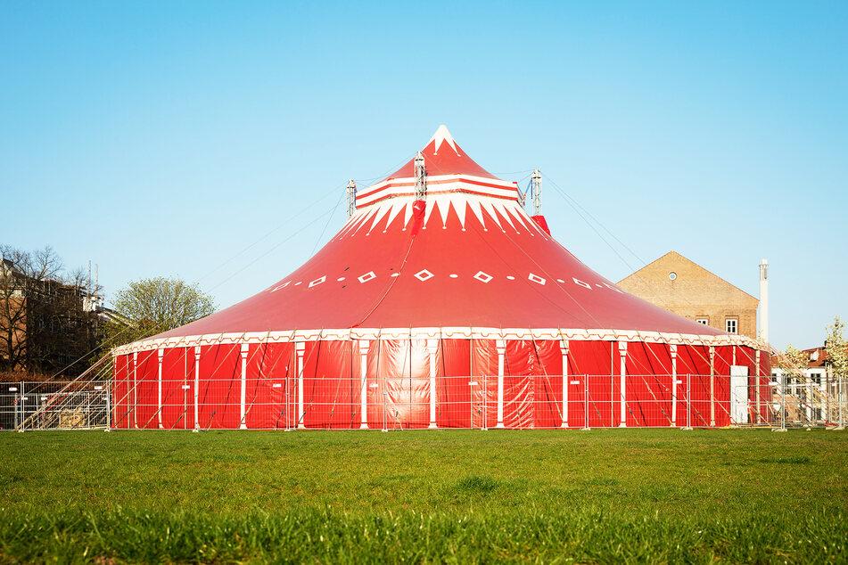 Ein Zirkuszelt steht auf einer Brache. (Symbolbild)