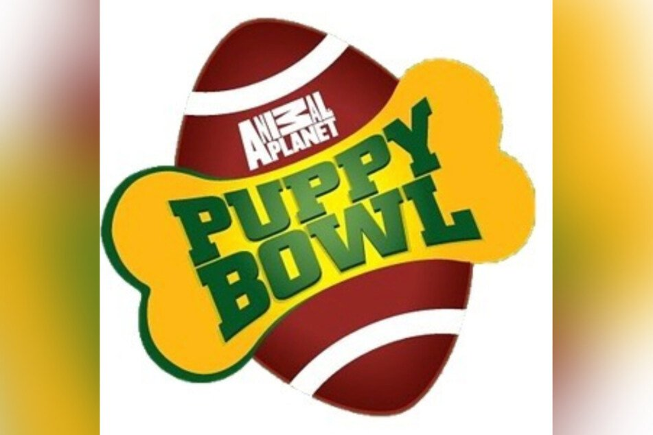 The Puppy Bowl is up its 17th edition this year.