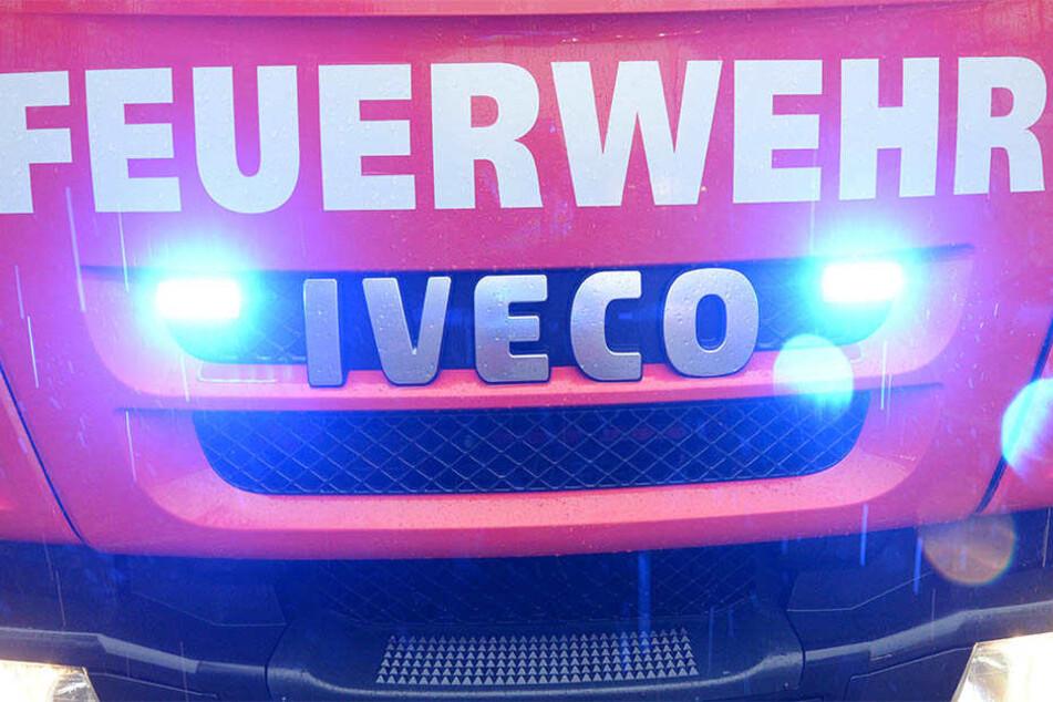 Die Feuerwehr konnte den Brand löschen und kümmerte sich auch um die Sicherheit der Ladung. (Symbolbild)