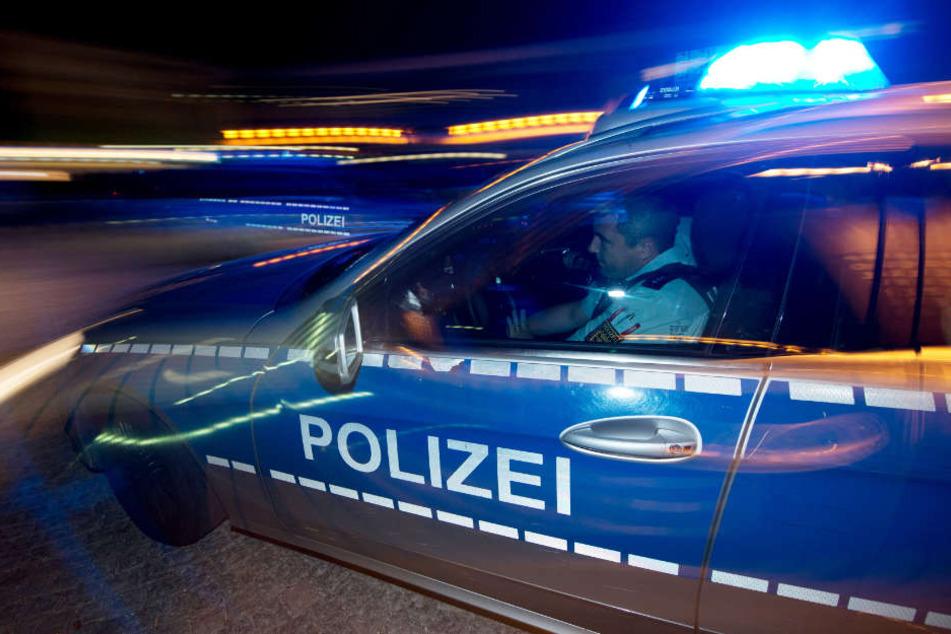 Die Polizei schnappte sich die beiden jungen Fahrer an einem stationären Blitzer. (Symbolbild)