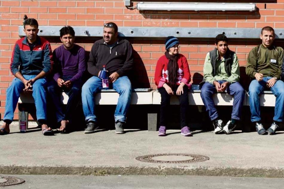 Flüchtlinge in Sachsen: 5 Fakten, die Ihr jetzt wissen müsst