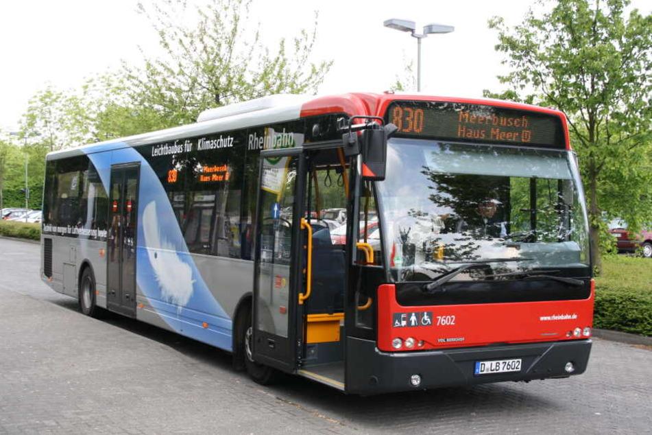 Ein Bus der Düsseldorfer Rheinbahn-Verkehrsbetriebe. (Symbolbild)