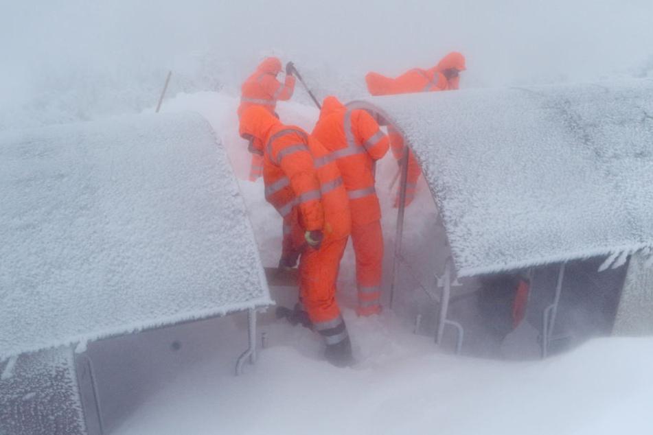Die Harzer Schmalspurbahn war am Donnerstag den dritten Tag in Folge damit beschäftigt, einen eingeschneiten Zug zu bergen.