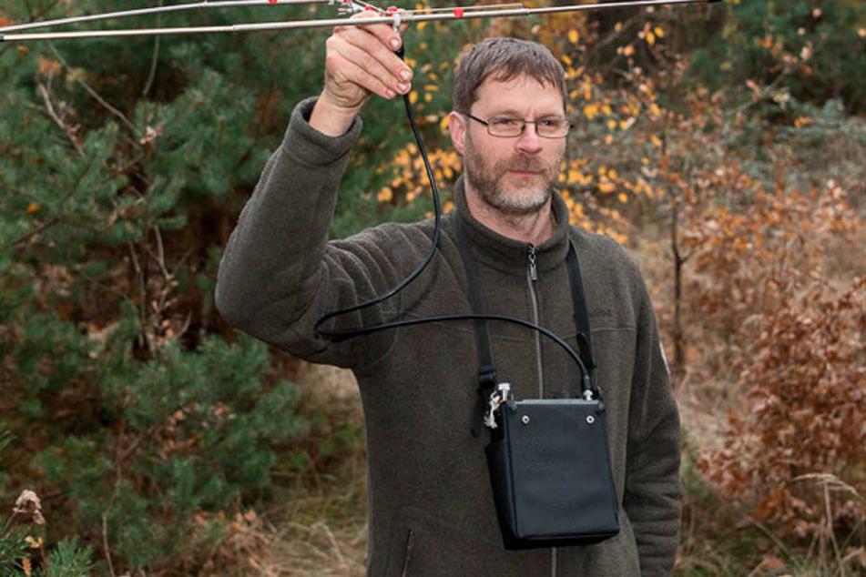 Biologe Michael Striese (47) beobachtet die Elchausbreitung in der Region.