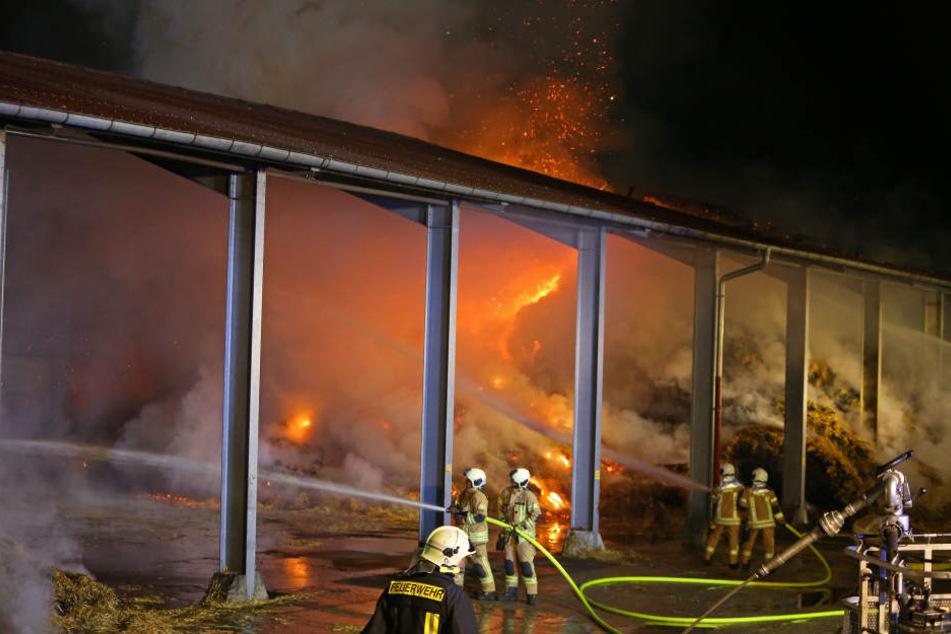 Die Feuerwehren Meerane, Schönberg, Pfaffroda sowie Ponitz waren im Löscheinsatz.