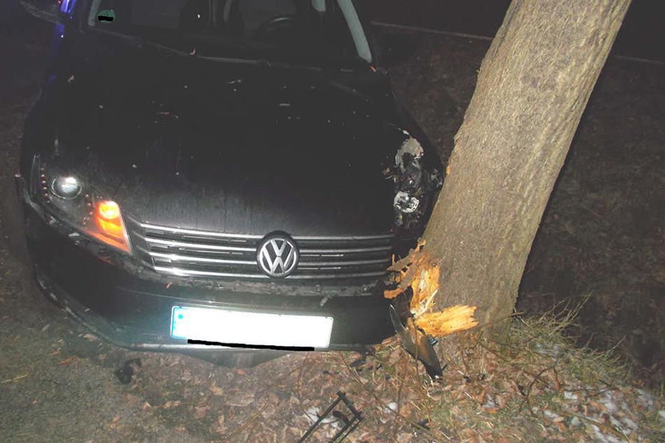 Der VW Passat überfuhr erst einen Graben und krachte dann gegen einen Straßenbaum.