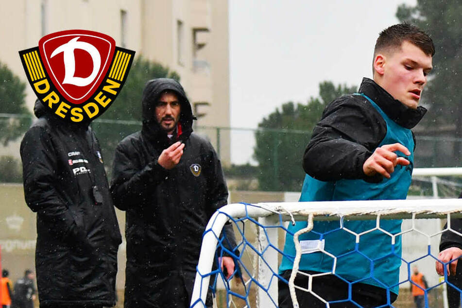 Dynamo setzt auf den eigenen Nachwuchs: Profivertrag für Abwehrkante Ehlers