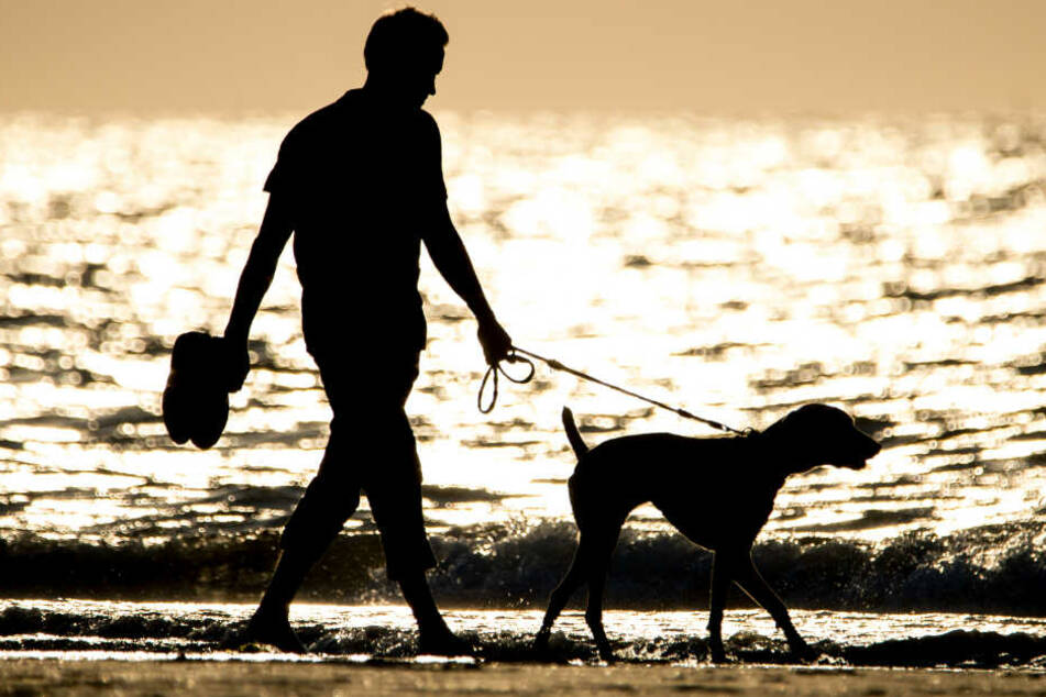Ein Mann geht mit seinem Hund am Strand entlang. (Symbolbild)