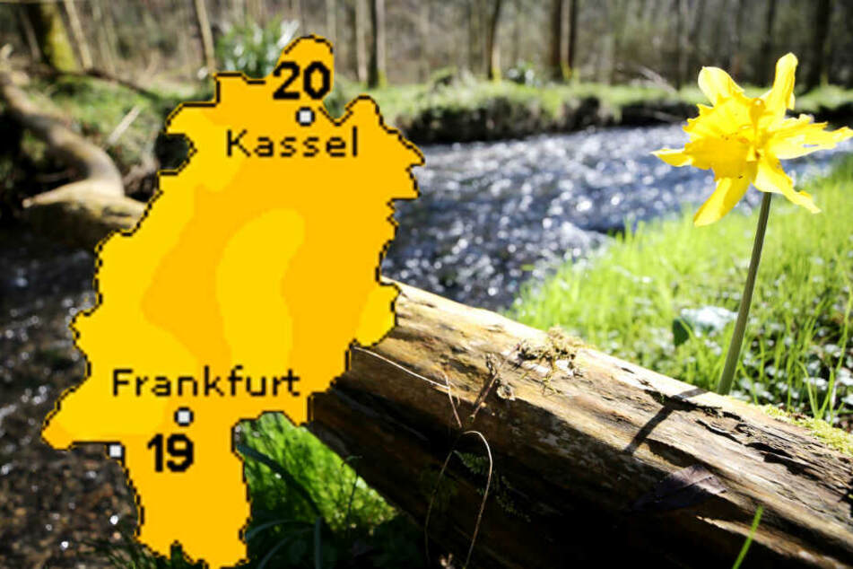 Insbesondere der Freitag in Hessen wird ein echter Frühlingstraum.