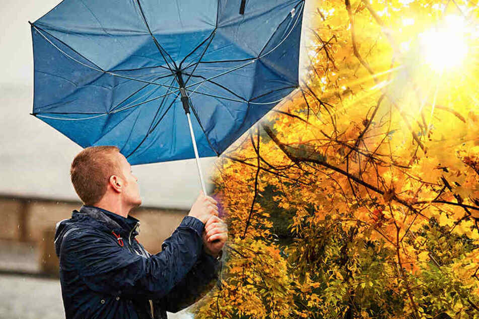 Wetter: Was kommt nach dem sonnigen Wochenende auf Sachsen zu?