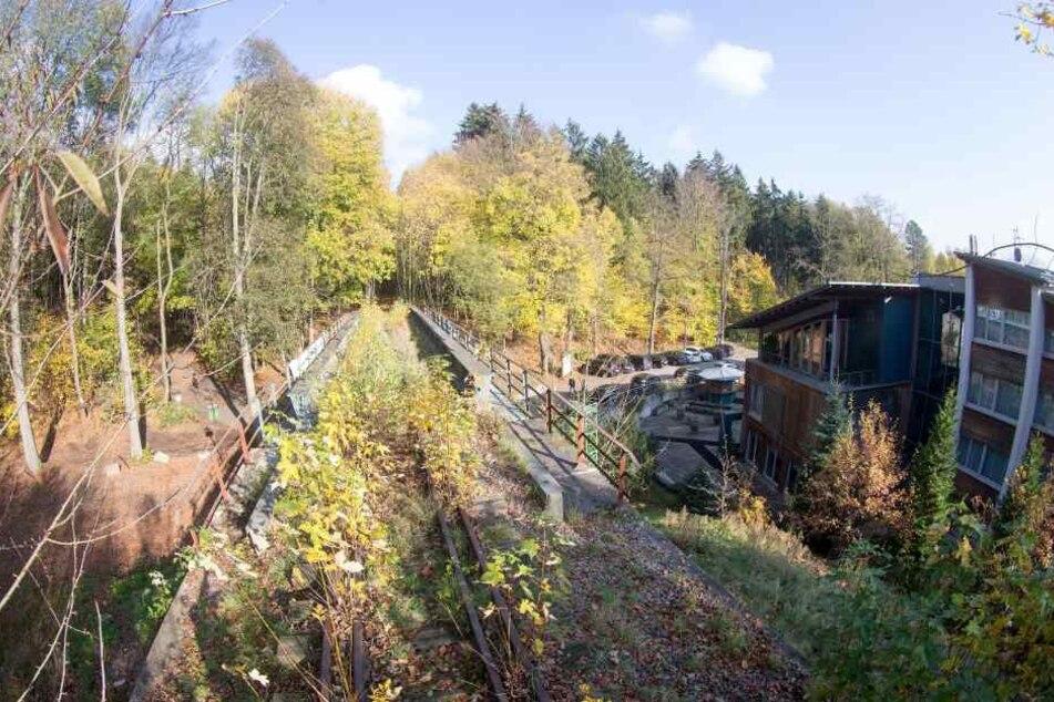 Bahn-Brücke ohne Verkehr am Forsthaus Grüna: Chemnitz will auf der ehemaligen Bahnstrecke vom Küchwald nach Wüstenbrand einen Radweg bauen.
