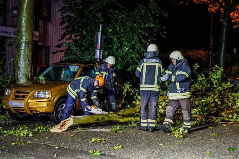 Einsatzkräfte in Waiblingen kümmern sich um einen herabgestürzten Ast.
