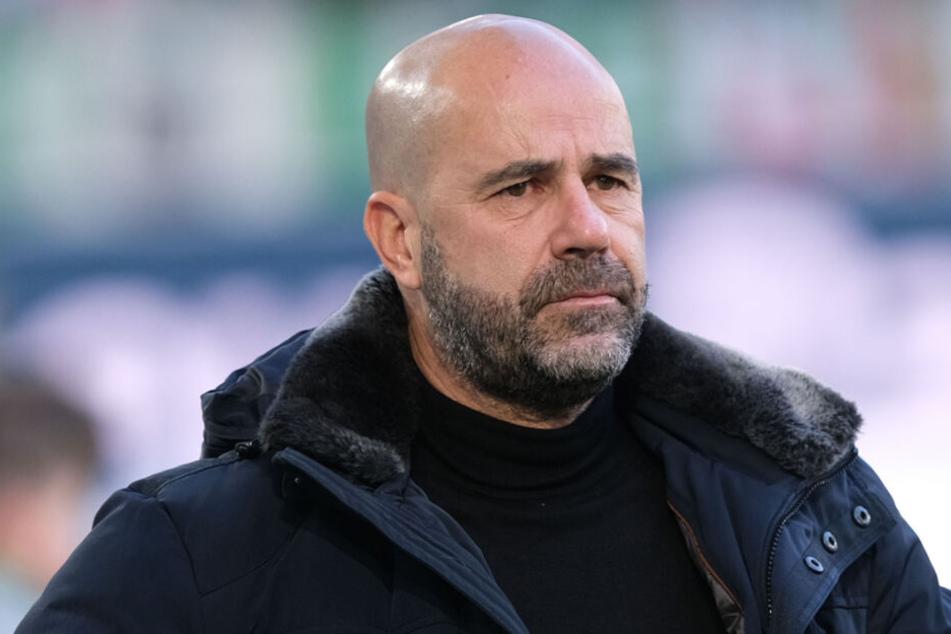 Im Sechzehntelfinale der UEFA Europa League muss Leverkusen-Coach Peter Bosz mit seiner Mannschaft beim portugiesischen Spitzenverein FC Porto ran.