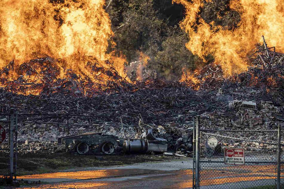 Lagerhalle von Jim Beam brennt lichterloh: Flammen verschlingen 45.000 Fässer Whiskey