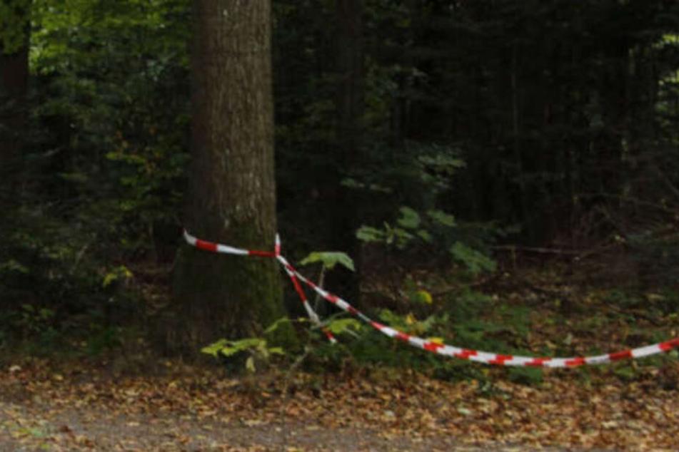 Hier wurde die Leiche von Simon P. gefunden.