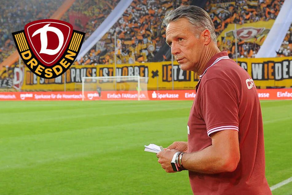 Hammer bei Dynamo: Verein feuert Trainer Uwe Neuhaus!