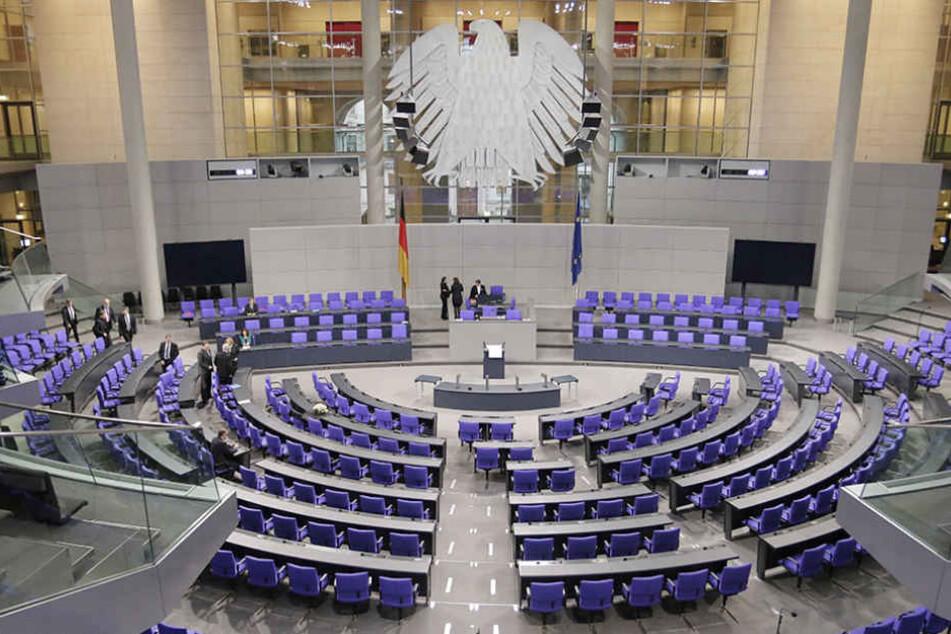 Sitz im Bundestag tatsächlich ein Maulwurf?