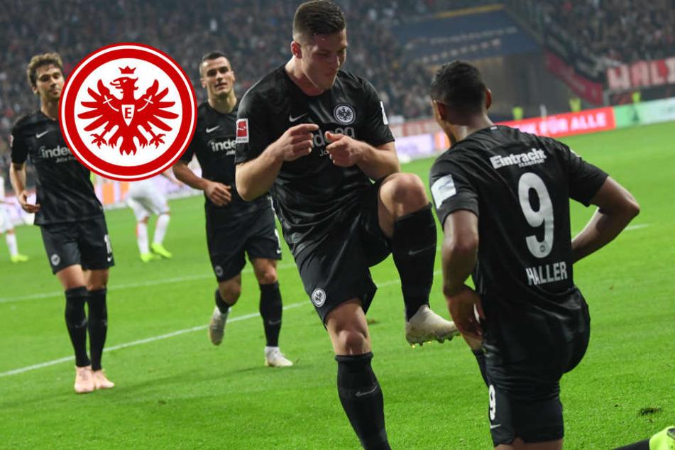 Fünf Mal Jovic! Eintracht ballert Fortuna mit 7:1 aus dem Stadion