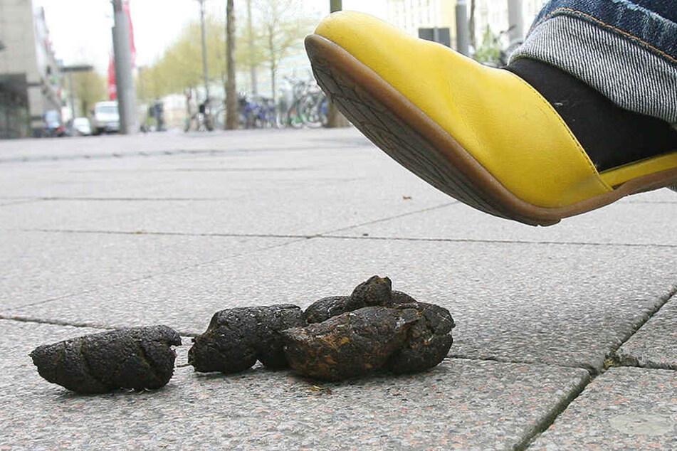 Hundekot liegt auf einem Fußweg, in den eine Frau hineinzutreten droht.