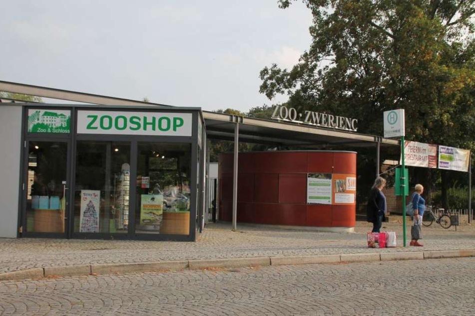 Der Zoo Hoyerswerda will bald süßen Leoparden-Nachwuchs präsentieren können.