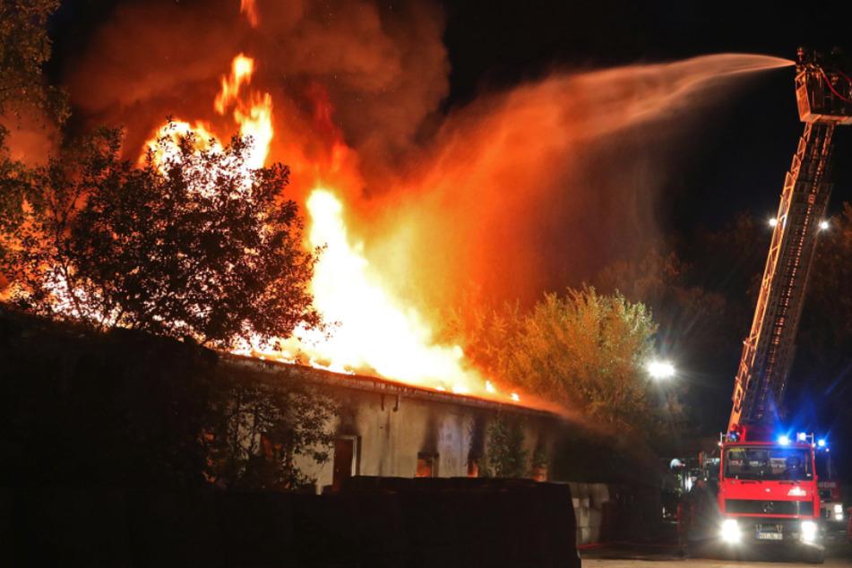 Verheerender Brand in Gersdorf: Werkstatt brennt völlig nieder