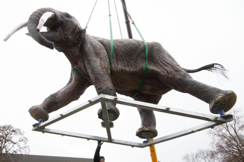 Ein Modell eines Urzeitelefants hängt an einem Kran.