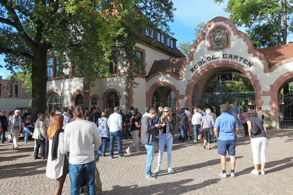 Etwa 100 Besucher warten vor dem Eingang.
