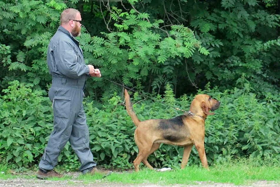 Spürhunde der Polizei waren ebenfalls im Einsatz.