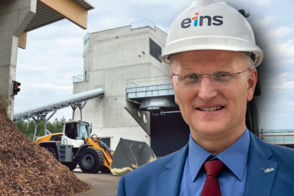 Eins Energie sagt Stadträten: So bauen wir das Holzkraftwerk