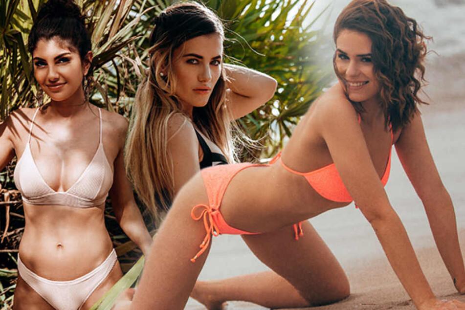 Sie buhlen derzeit um die Gunst des Bachelors: Yeliz Koc (24, v.l.), Roxana Papadie (26) und Janine Christin Wallat (22).