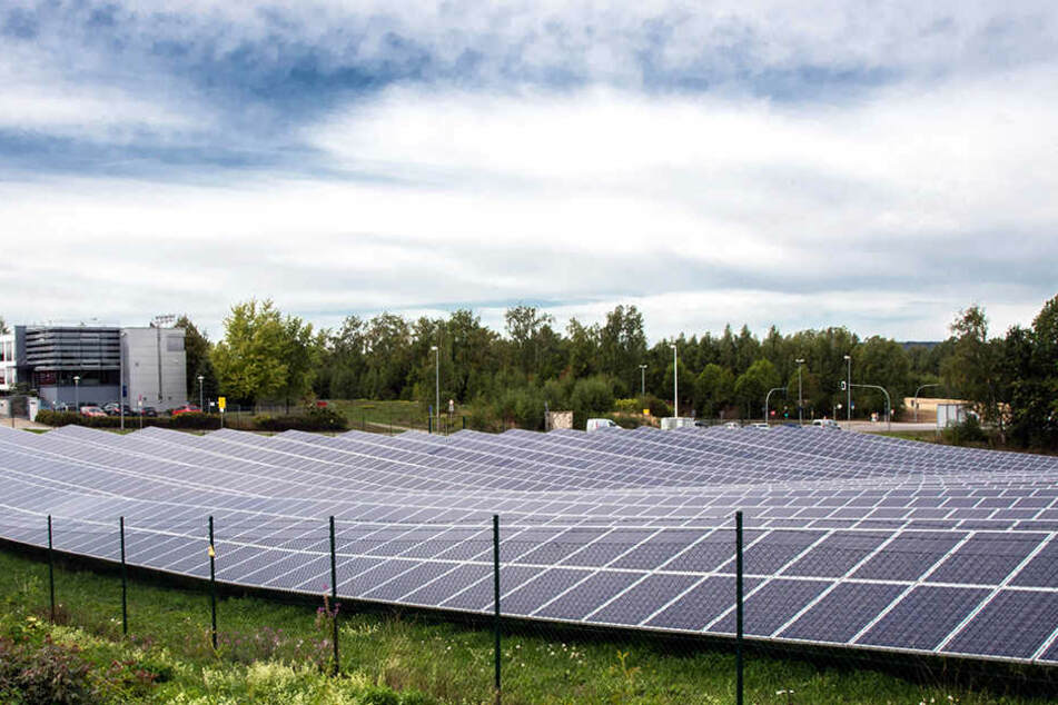 Solaranlagen müssen nicht unbedingt ebenerdig stehen wie an der Neefestraße. Jörg Vieweg will mehr davon auf öffentliche Gebäude bringen.