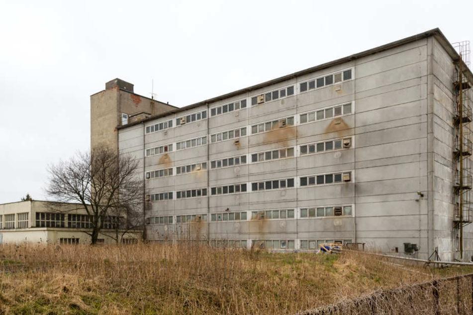 Das Schweinehochhaus im Landkreis Anhalt-Bitterfeld ist ins Visier der Behörden geraten.