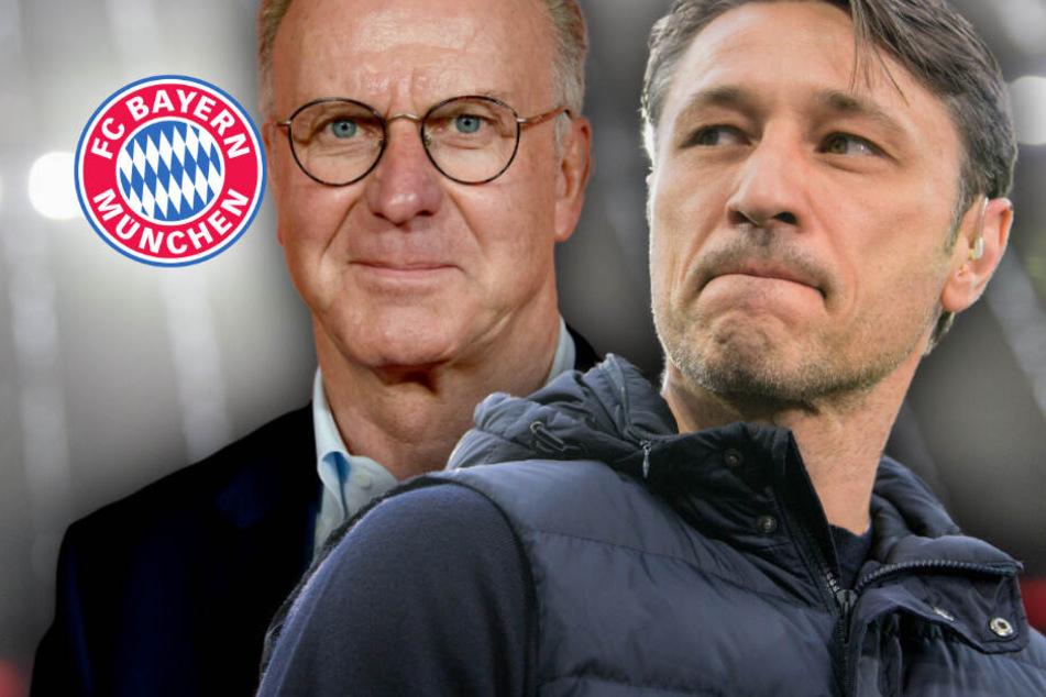 """Bayern-Hammer oder eine """"Ente""""? Verwirrung um Kovac-Schicksal"""