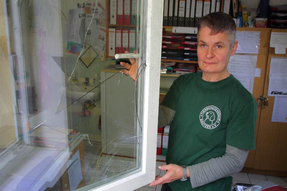 Katrin Zorn (53), stellvertretende Tierheim-Leiterin, zeigt das kaputte Fenster.