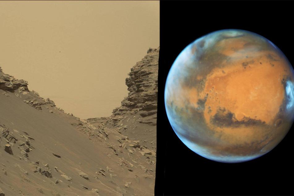 Bisher gleicht der Mars einer kargen kalten Wüste. Das möchte die US-Weltraumbehörde NASA ändern.