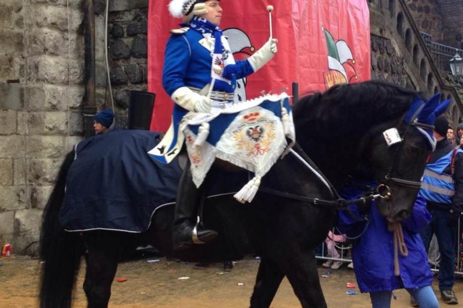Pferd mit Reiter beim Kölner Rosenmontagsumzug.