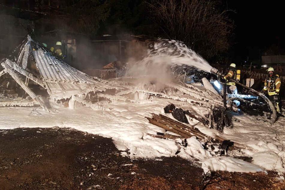 Die Feuerwehrkräfte versuchten alles, dennoch starben bei dem Brand viele Tiere.