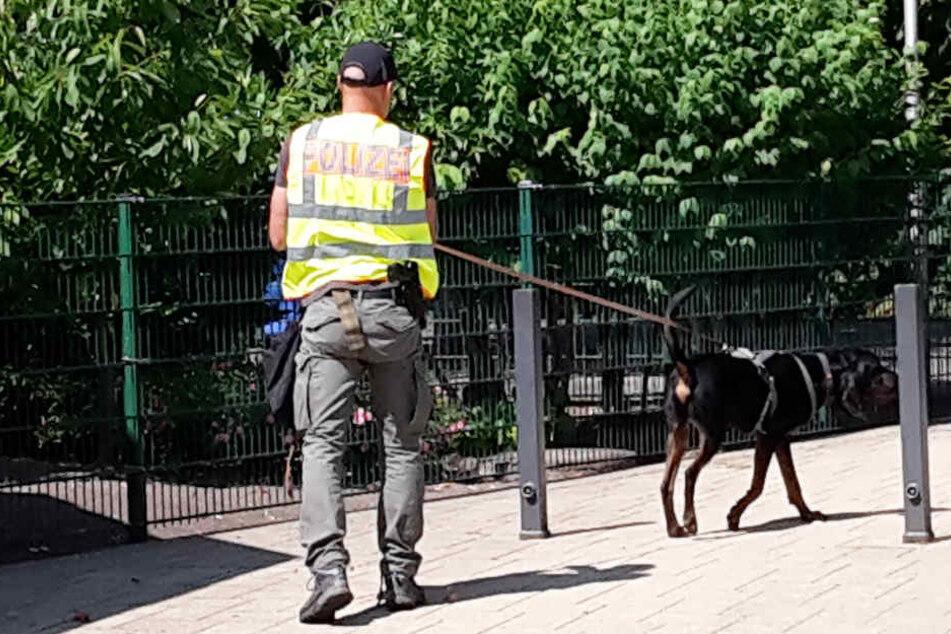 Ein Spürhund war im Einsatz, um belastendes Material zu suchen.