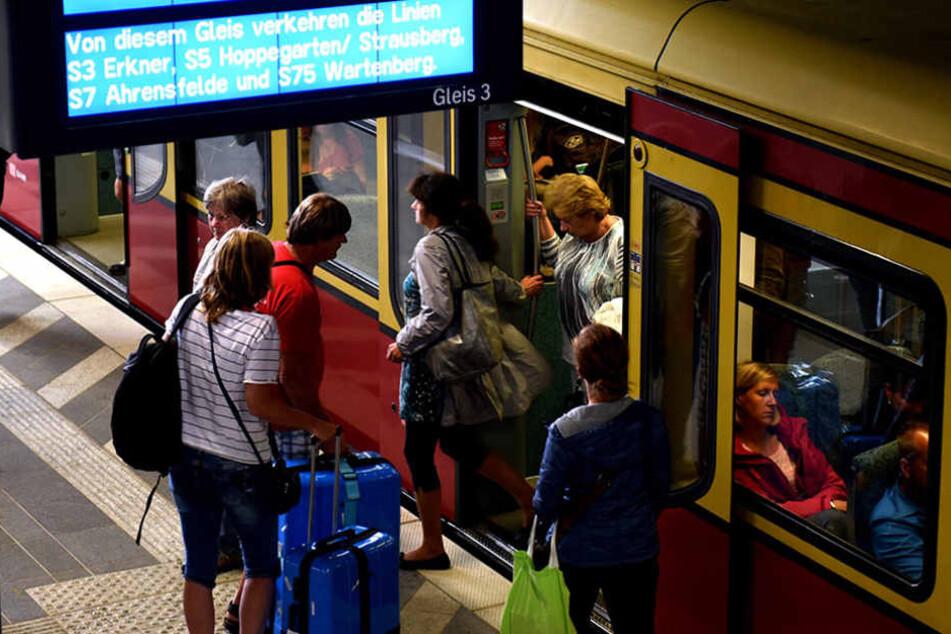 Die S-Bahn-Strecke zwischen Erkner und Friedrichshagen ist derzeit unterbrochen. (Symbolbild)