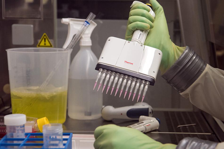 Im Robert Koch-Instituts (RKI) in Berlin werden Krankheitserreger wie Ebola-, Lassa- oder Nipah-Viren untersucht.
