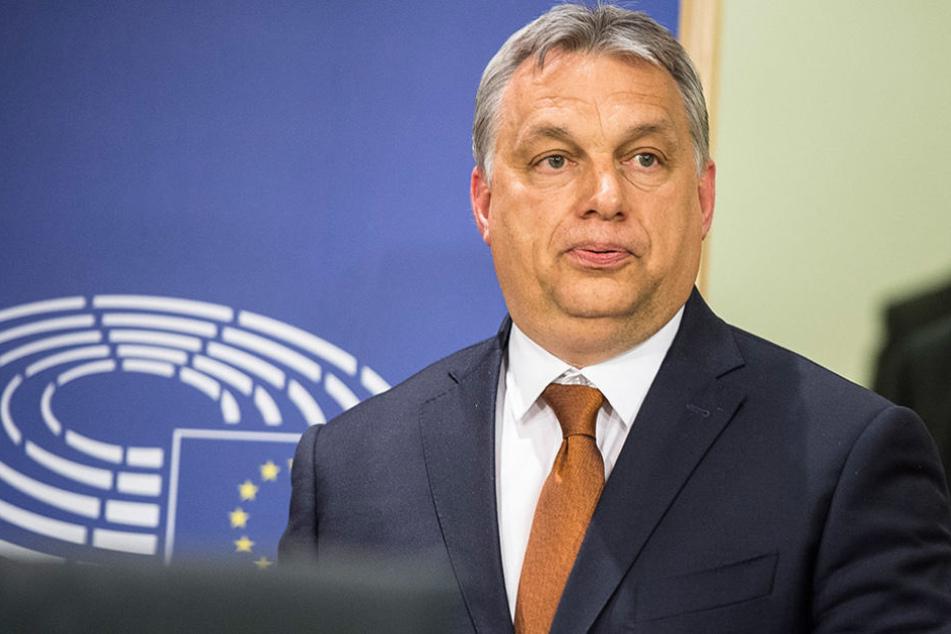 Viktor Orbans Anti-Terroreinheit TEK sah in zwei Briten eine Bedrohung und ließ sie des Landes verweisen.