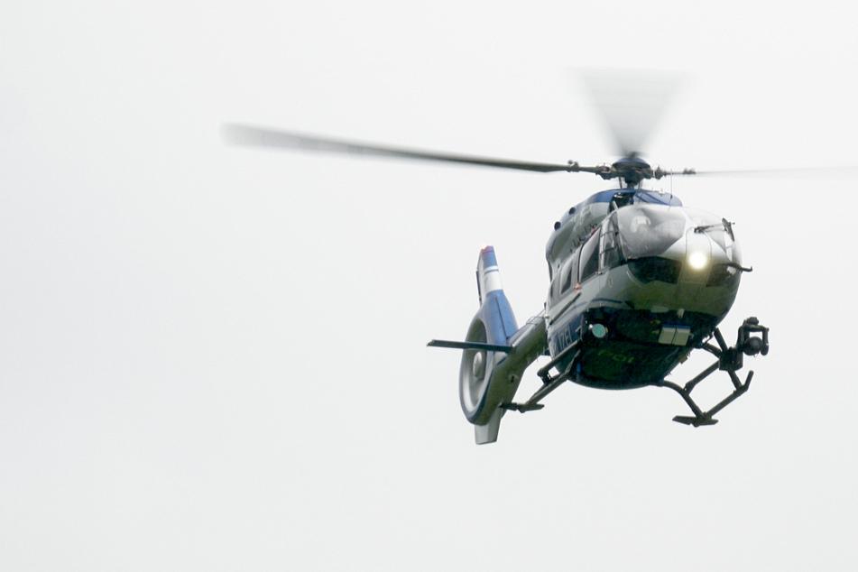 Mysteriös: Hilfe-Schreie aus dem Wald, dann rückt die Polizei mit einem Groß-Aufgebot an