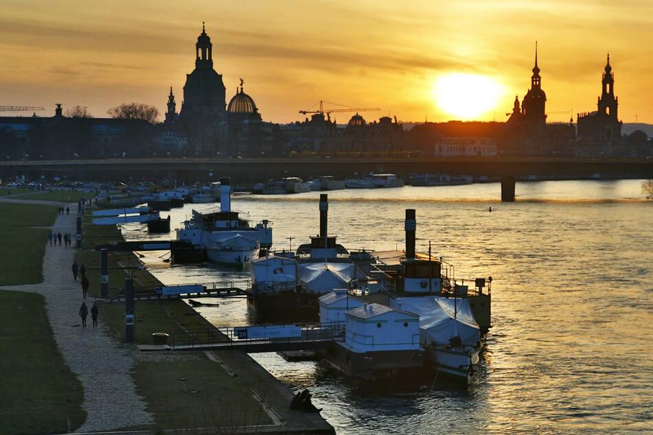 Die Inzidenz steigt in Dresden wieder leicht an.