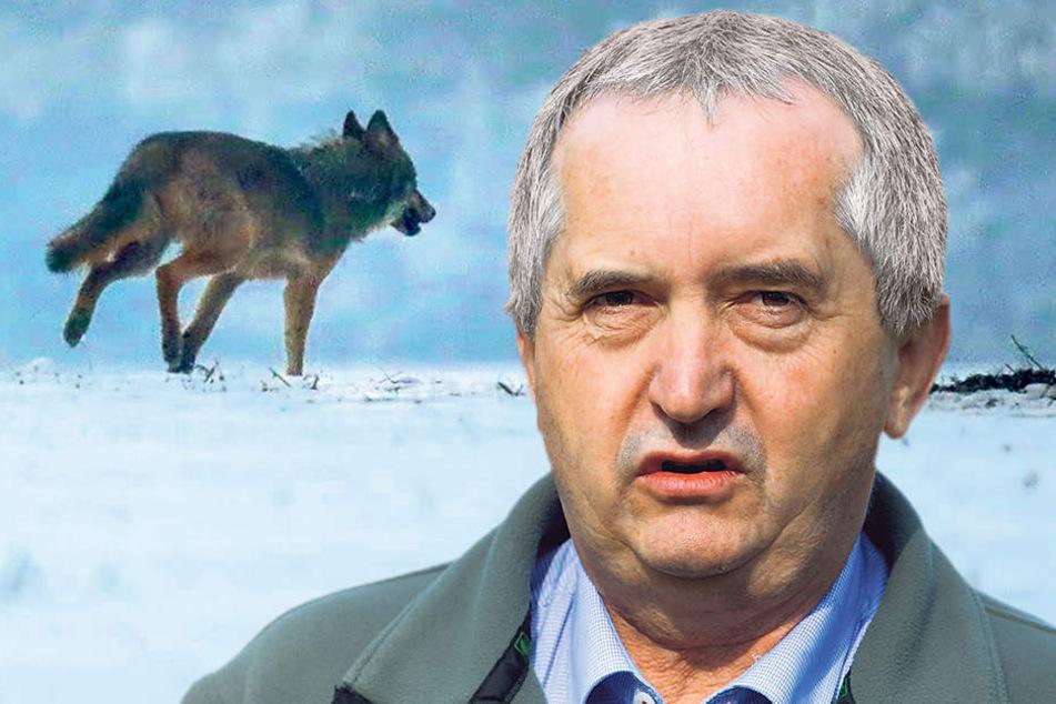 """Sein Haus hat die neuesten Erkenntnisse zu """"Pumpak"""" veröffentlicht: Umweltminister Thomas Schmidt (55, CDU)."""