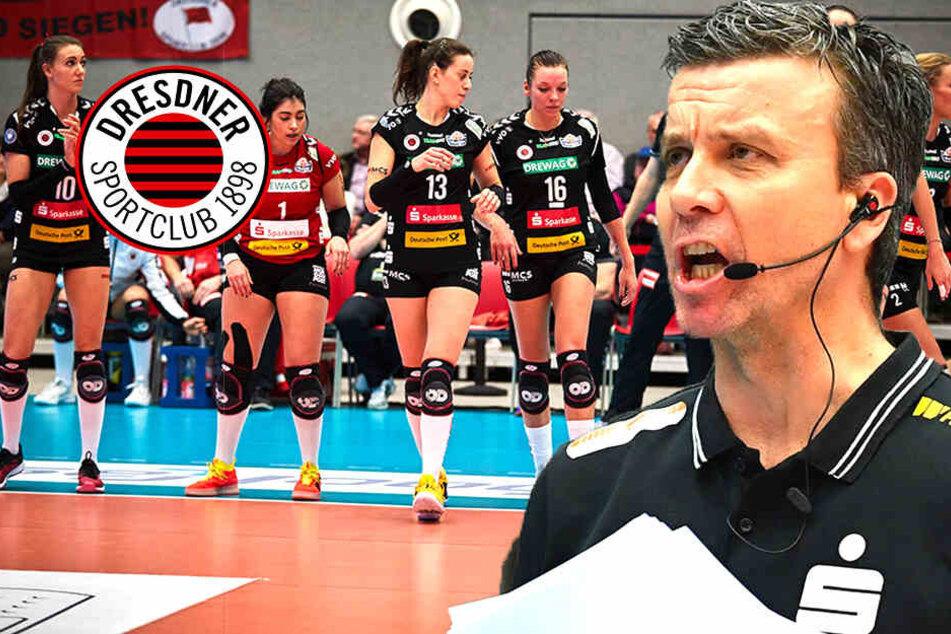 Grüppchenbildung beim Dresdner SC? Coach Waibl weiß davon nichts