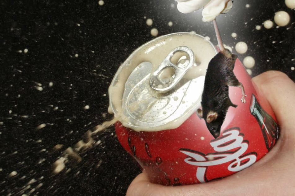 Coca-Cola meint, wäre eine Maus in der Dose, hätte sie sich in sechs Wochen mehr zersetzt.
