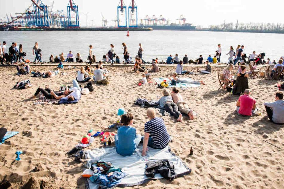 Sonnenhungrige genießen das Frühlingswetter am Elbstrand in Hamburg.