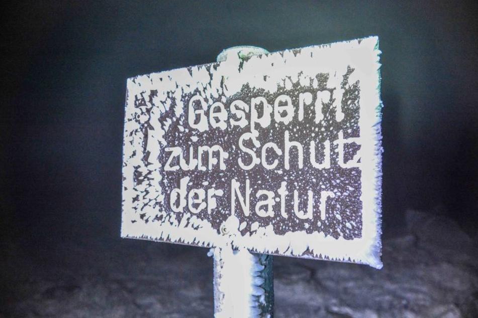 Winterliche Szenerie am Sonntagabend auf dem Brocken.