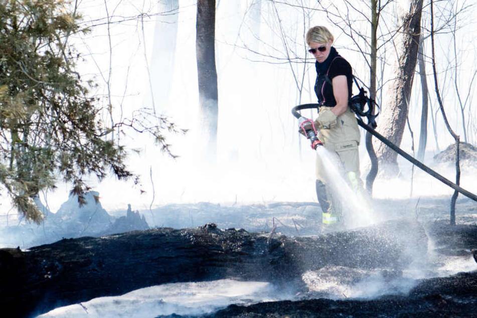 Eine Feuerwehrfrau löscht einen Waldbrand.